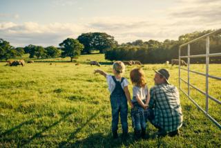 Jusqu'où la valorisation des sociétés du secteur agroalimentaire biologique peut-elle monter ?